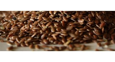 Frise ai semi di lino ricche di Omega3