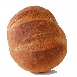 Pane di semola tondo